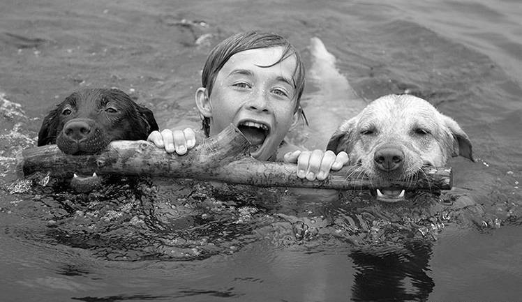 dogs and kid swimming b&w